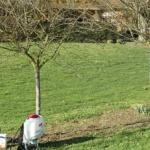 Comment restaurer votre jardin après l'hiver