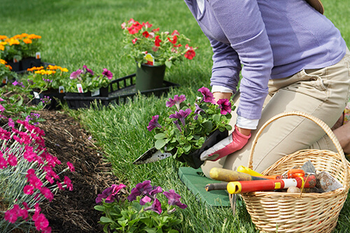 Femme-à-genoux-sur-coussin-de-jardinage