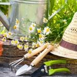 Comment préparer votre jardin pour le printemps !