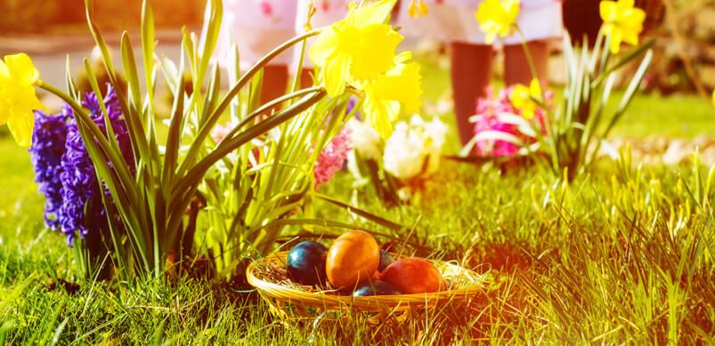 9 activités pour divertir les enfants le week-end de Pâques - Organiser une chasse aux œufs de Pâques