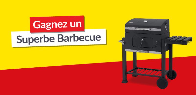 un superbe barbecue de 170 euros